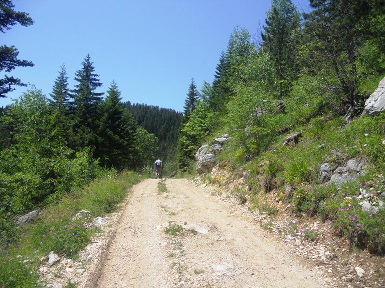 Put ka Zabojskom jezeru
