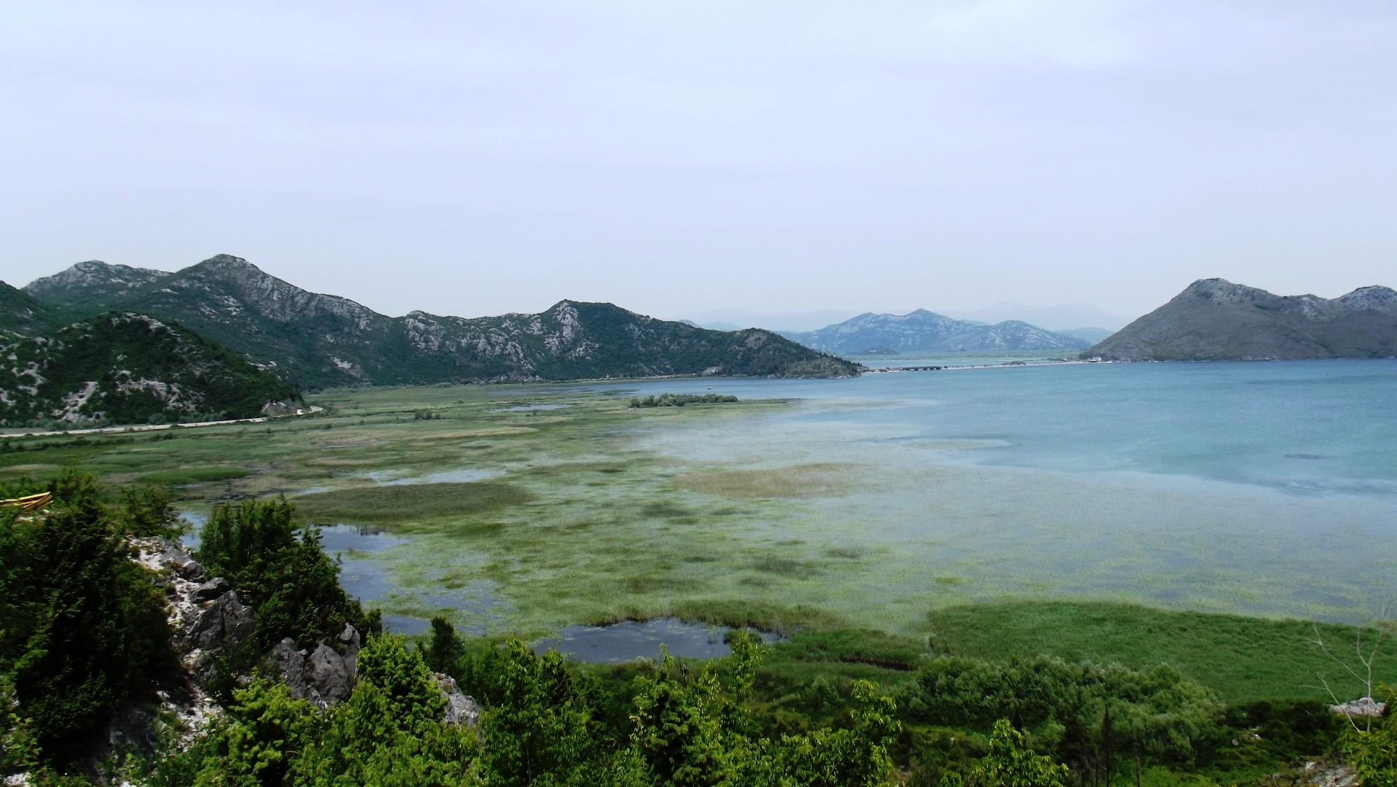 Skadarsko jezero
