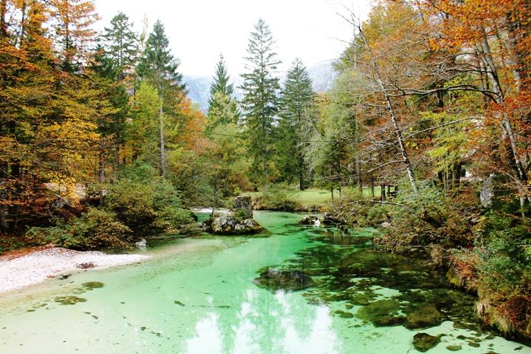 Rijeka Jezernica, Bohinjsko jezero