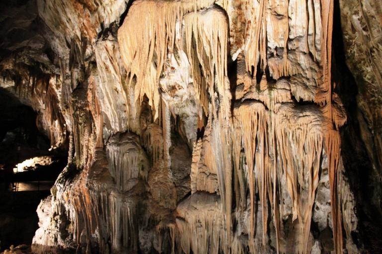 Postojnska pećina