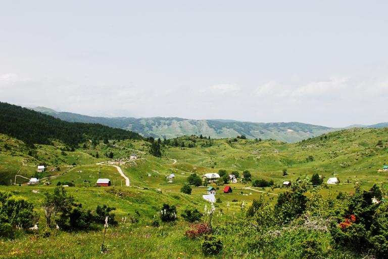 selo Nedajno, Piva