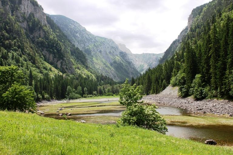 Sušičko jezero sredinom juna