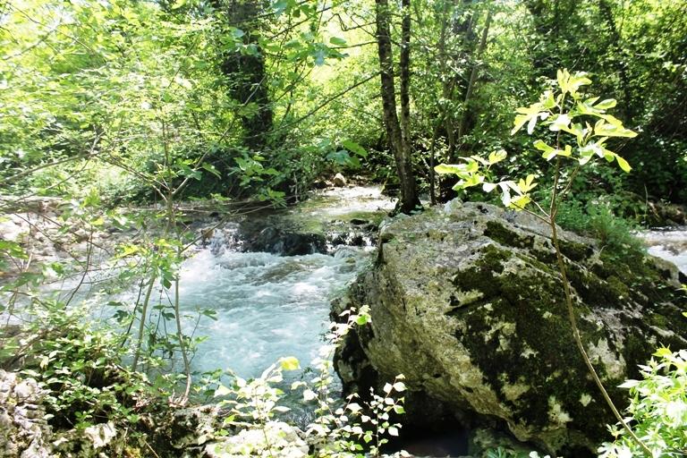 Rijeka Oraovštica