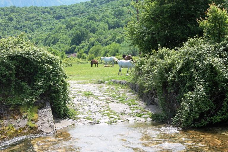 Dolinom rijeke Oraovštice