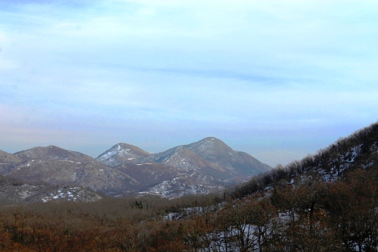 Paštrovska gora