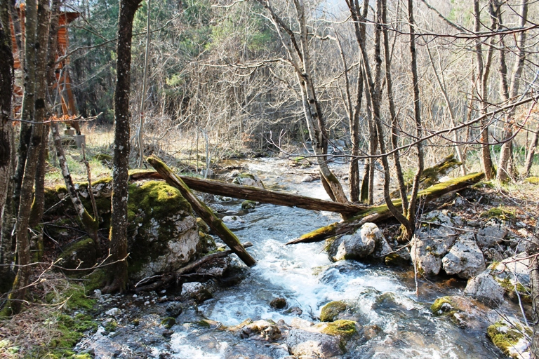Suški potok