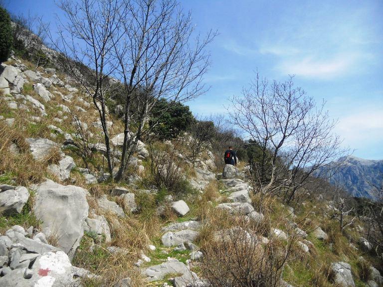 Risan-Vranovo brdo