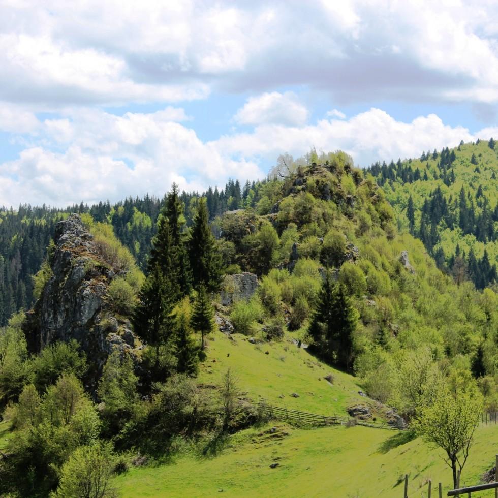 Koznik, Jerinin grad (Kozica)