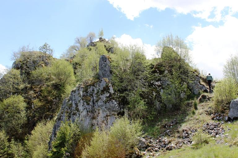 Koznik (Jerinin grad)