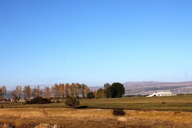 Kupreško polje