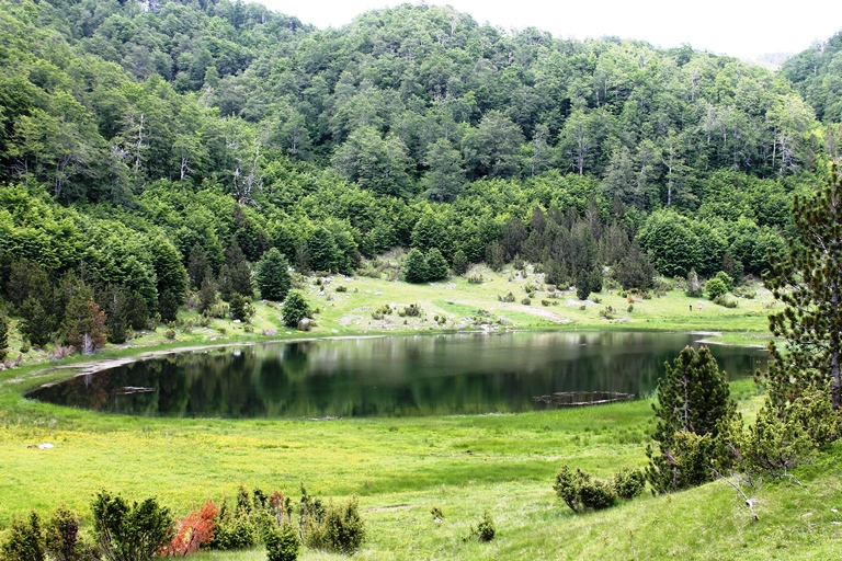 Ponikvičko jezero