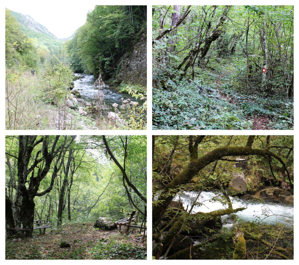 Kanjon rijeke Bistrice