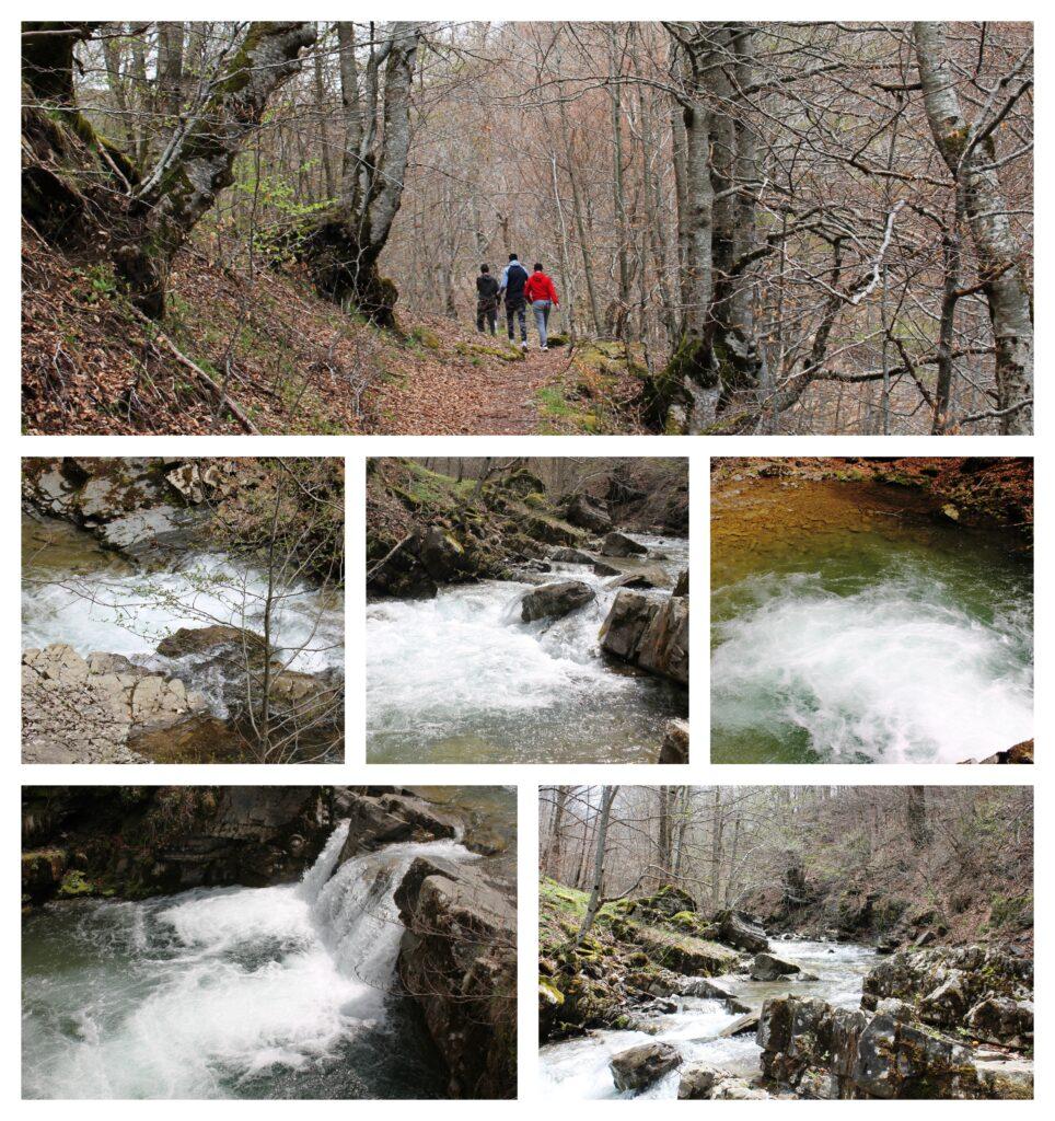 Rijeka Veruša