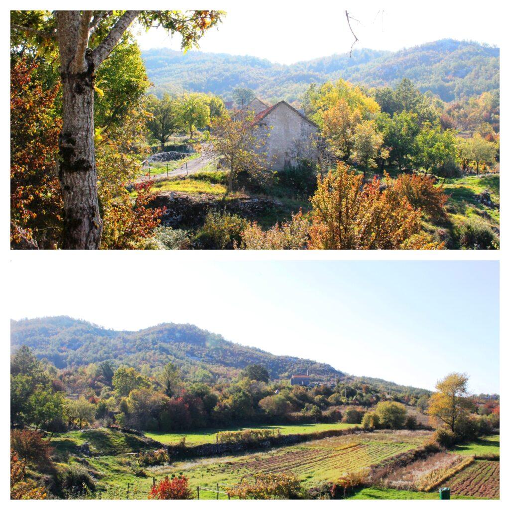 Selo Seoca