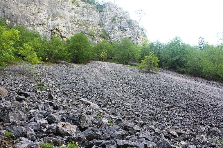 rijeka Ljutica